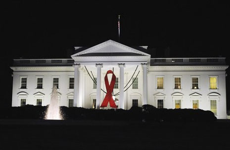 White House Christmas 2012 Terry Bean iPhone Photo